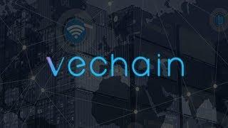 ✅ Криптовалюта VeChain (VET) Обзор. Стоит ли инвестировать в VeChain?