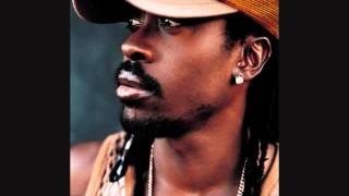 Best of Beenie Man Reggae Dancehall Mix