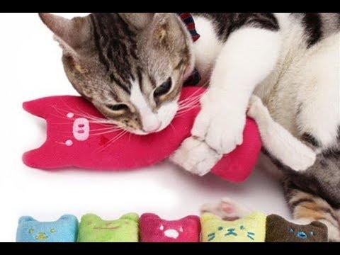 Милая подушка грызушка для вашего кота и кошечки