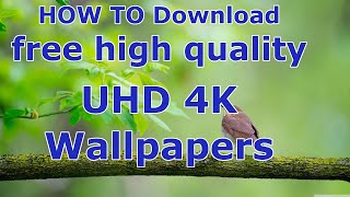 How To Download Free High Quality UHD 4K Desktop Wallpapers