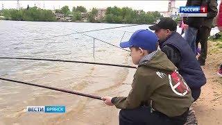 Стодольское озеро в клинцах рыбалка