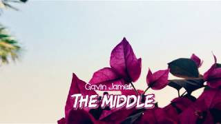 [Vietsub] Gavin James | The Middle