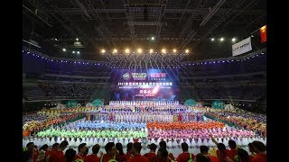 Nanjing 2017.9.2 Roller Games FIRS World Championship Opening Ceremony 南京 2017 世界全项目轮滑锦标赛 开幕式