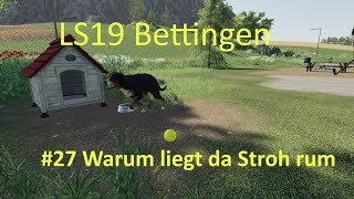 Ls19 Bettingen Mp Funny Videos
