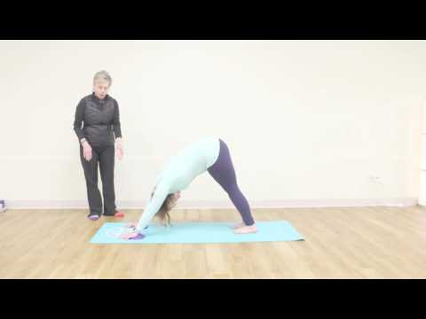 12 Props of Yoga - Jellies