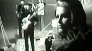 The Animals - Bring It On Home To Me  - stereo remix