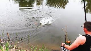 Вечерняя рыбалка это во сколько