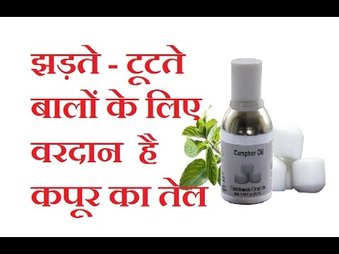 Camphor Oil at Best Price in India