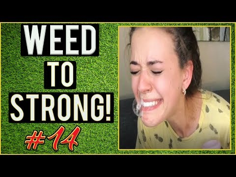 WEED FUNNY FAILS AND WTF MOMENTS! #14