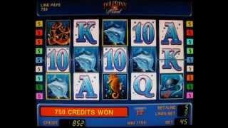 Секреты игровых автоматов, выиграть на Дельфинах