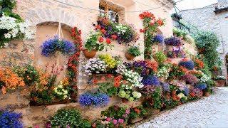 Top 80 Hanging Flower Planter Ideas