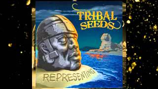 Night And Day - Tribal Seeds Lyrics