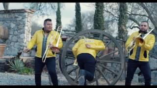 Marco Flores y La Jerez-La Burra Orejona
