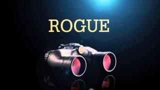 Бинокль Leupold Rogue 10x50 Black от компании Путешественник - видео