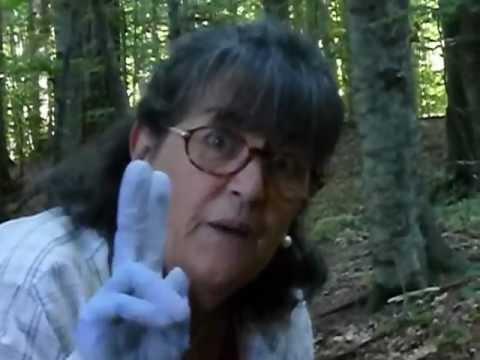 Trattamenti di un fungo di piedi e unghie