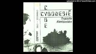 Cybe 三 Cybonesië - Tropische Klankbeelden (1985) FULL ALBUM