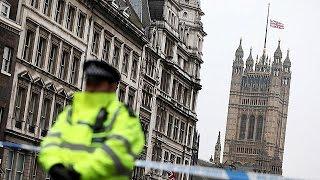 UK: Seven arrests made in Westminster terror probe