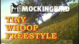 Send it! Saturday - DVR Footage vom FPV Tiny Whoop Freestyle - Mockula7 Mobula7