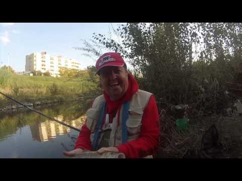 Pesca di mk di video
