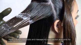 Brazilian Keratin Application Process (FULL Version)
