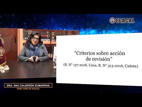 CRITERIOS SOBRE ACCIÓN DE REVISIÓN - Luces Cámara Derecho 136