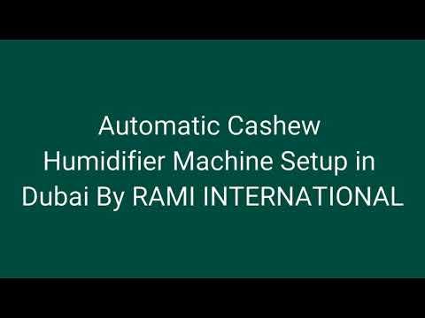 Cashew Nut Humidifier
