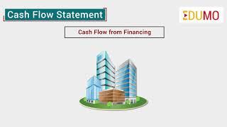 What is Cash Flow Statement?