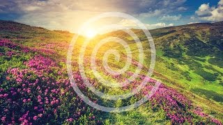 Anti Stress Relaxing Music - Positive DeStress Music, Anxiety, Stress Relief, Worries, Depression