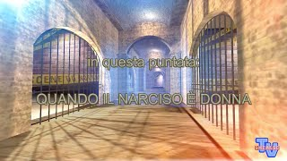 'Quando il narciso è donna' episoode image