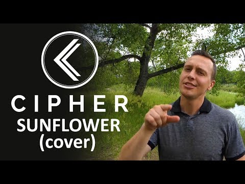 Sunflower (Cover) | Cipher