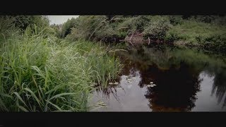 Marymoor Park with GoPro HD Hero3 (Black Edition) and Steadicam Smoothee