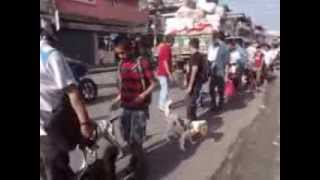 preview picture of video 'Rabies Day Dog Rally Dharan 2013'