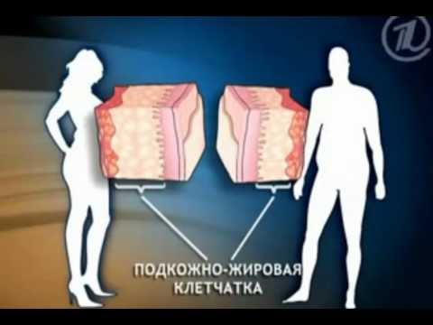 Мужчины и женщины худеют по разному!