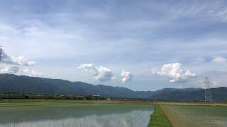 【生配信のおっさん】~マキノ町の田園から〜