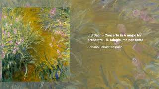 Concerto for Harpsichord, Flute and Violin in A minor, BWV. 1044