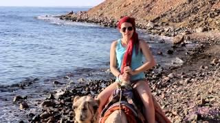 Смотреть онлайн Дахаб: курорт для дайверов