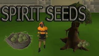 OSRS - Spirit seeds GUIDE