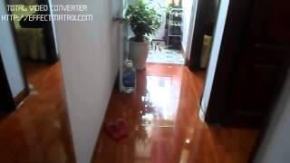preview picture of video 'Bán căn hộ chung cư MiNi Số 16 ngõ 54 đường Trung Văn, Lê Văn Lương, Từ Liêm, Hà Nội'