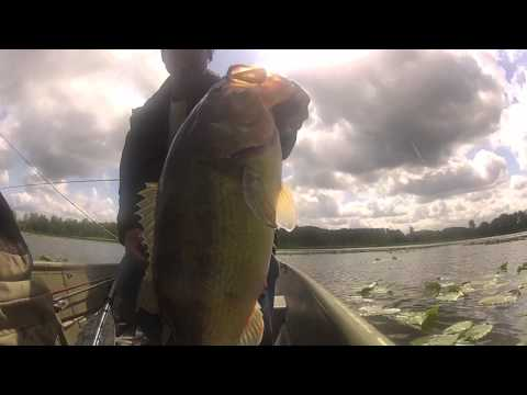 Pond Fishing For Largemouth Bass 2012