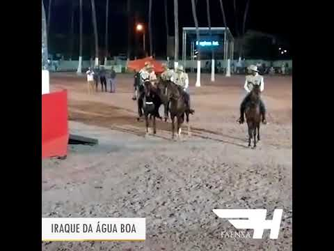 Iraque da Água Boa - Campeão Cavalo Brasileiro de Marcha Picada 2017