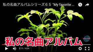 私の名曲アルバムシリーズ65