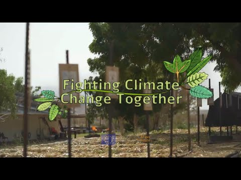 Fighting climate change together!