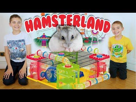 ON CONSTRUIT HAMSTERLAND ! - PARC D'ATTRACTION POUR HAMSTER 🎡 🐹