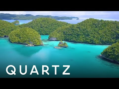 How Palau is Protecting it's Pacific Paradise