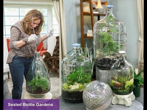 , title : 'CLOSED TERRARIUM DIY : SEALED BOTTLE GARDENS 🌱 Closed Terrarium Plants 🌿Shirley Bovshow
