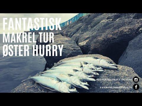 Makrelfiskeri i Øster Hurup