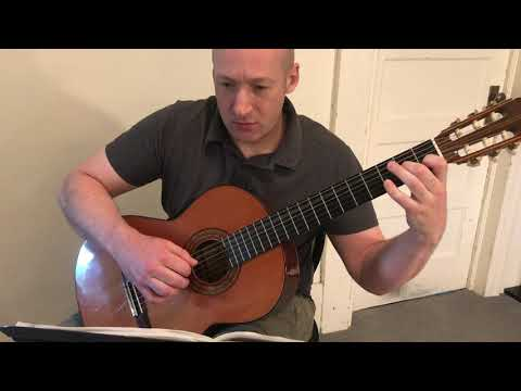 Allegro is a fun, and easy classical guitar piece by Giuliani that we could work on in your lessons.