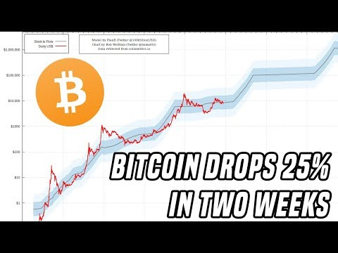 Bitcoin Drops 25% in Two Weeks | Here's What You Need To Know