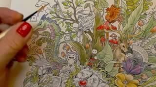 Derwent Inktense Pencils In Kerby Rosanes Imagimorphia
