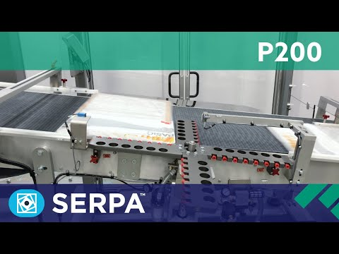 P200 Side Load Case Packer running filters – Serpa Packaging Solutions